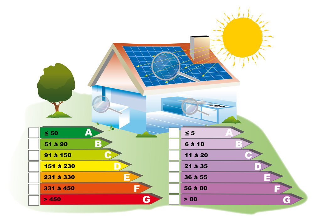 energy audit Professional energy assessments generally go into great detail to assess your home's energy use the energy auditor will do a room-by-room examination of the residence, as well as a thorough examination of past utility bills.